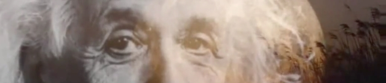 Einstein Banner